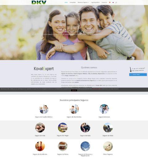captura pantalla diseño web kovalexpert